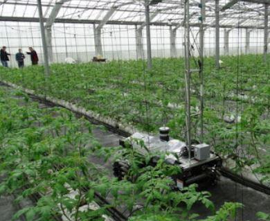 El robot agrícola GreenPatrol realizado en el País Vasco